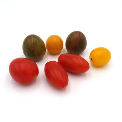 Wilde Tomaten Mix von Hannig