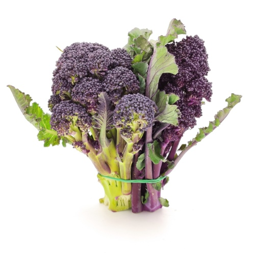 violetter Brokkoli im Bund, 200g von Azienda Di Lauro