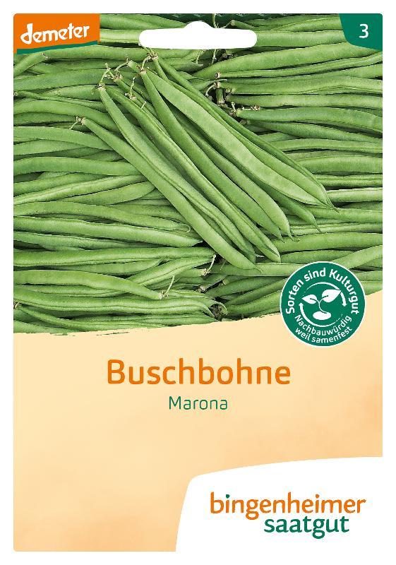Saatgut Buschbohnen Marona von Bingenheimer Saatgut