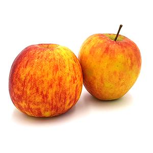Äpfel Braeburn von Schulte