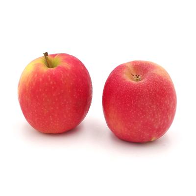Äpfel Cripps Pink