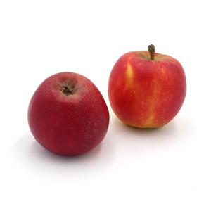 Äpfel Topaz von Cordes