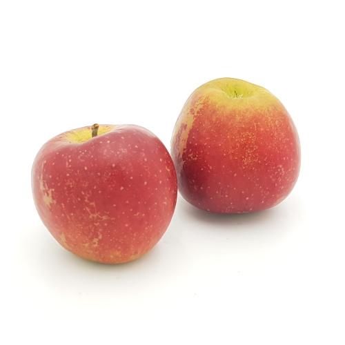 Äpfel Wellant von Schulte