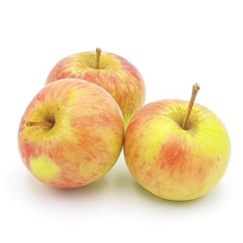 Äpfel Rubinette von Schulte
