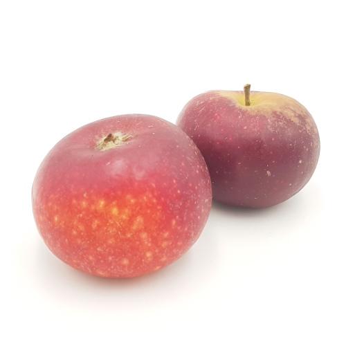 Äpfel Ingrid Marie von Cordes