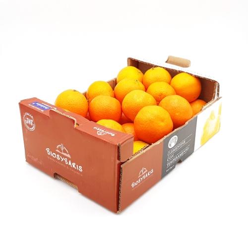 2,3 kg Vorratskistchen Clementinen von Biosybaris