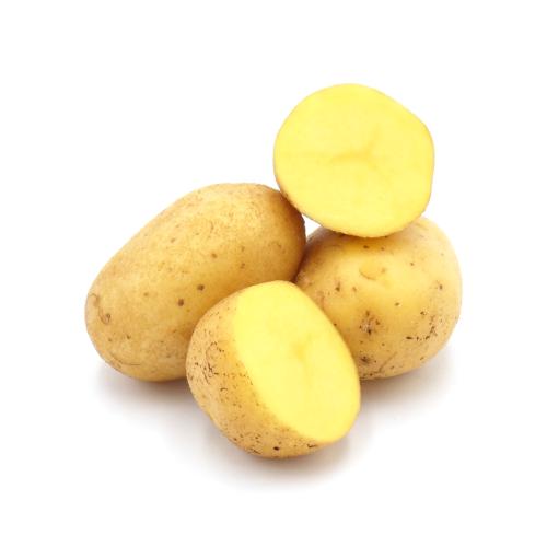 mehlig kochende Kartoffeln, Neue Ernte Sorte Gunda