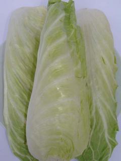 Salat - Zuckerhut