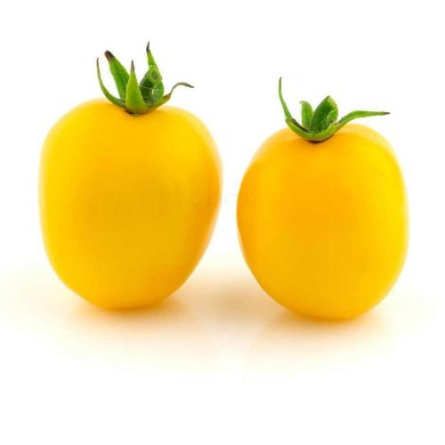 Tomaten Roma gelb, regional