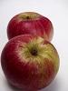 Apfel - Akane